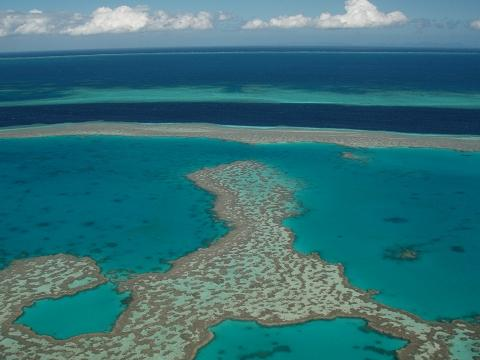 Great Barrier Reef- This photo is an aerial view picture of the world's largest reef system, located in Australia, taken by Cojigas during a helicopter ride.