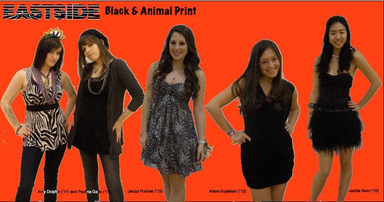 Black and Animal Print