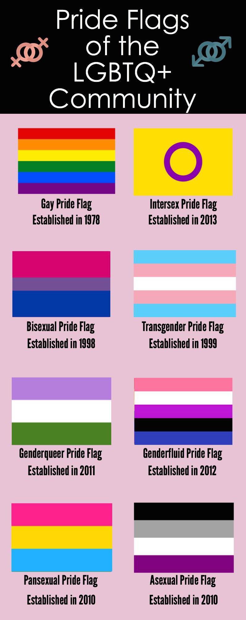 hetero experience homo photo de bite de gay
