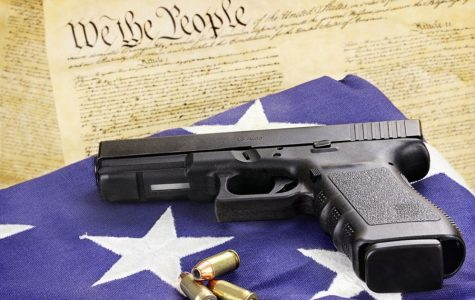 Why Gun Control Laws need reform