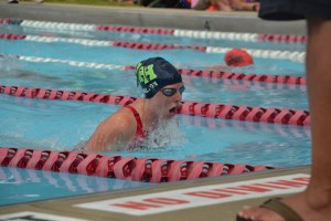 Summer swim teams act as a break from intense competition